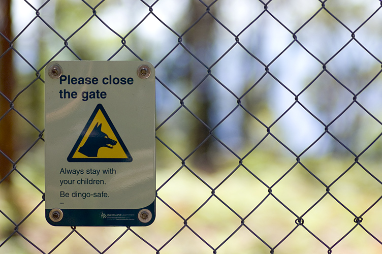 dingo proof fence